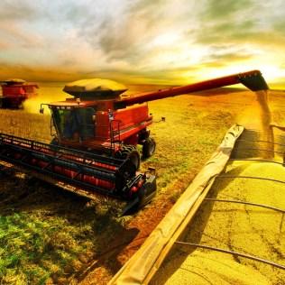Setor de logística agro merece tanta atenção quanto outros setores