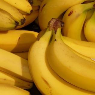 Diferentes tipos de banana para agradar todos os tipos de paladar