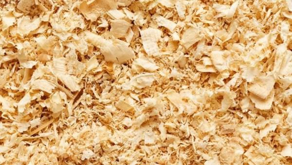 Serragem é formada por pequenas lascas e pó de madeira