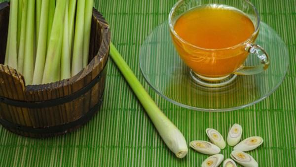 Capim cidreira ou erva cidreira tem sabor e aroma característicos