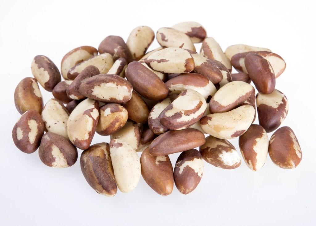 castanha do Brasil é altamente nutritiva