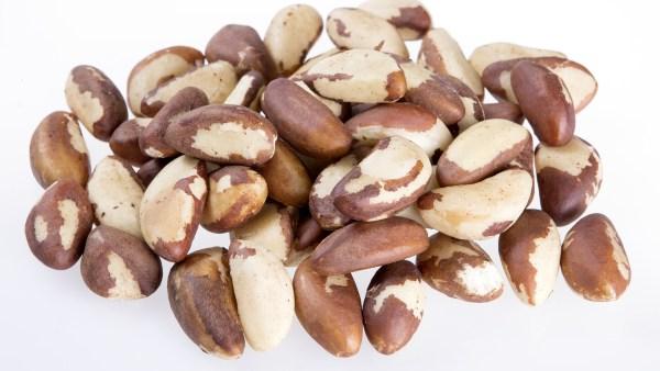 Castanha do Brasil é altamente nutritiva e ajuda na prevenção de câncer