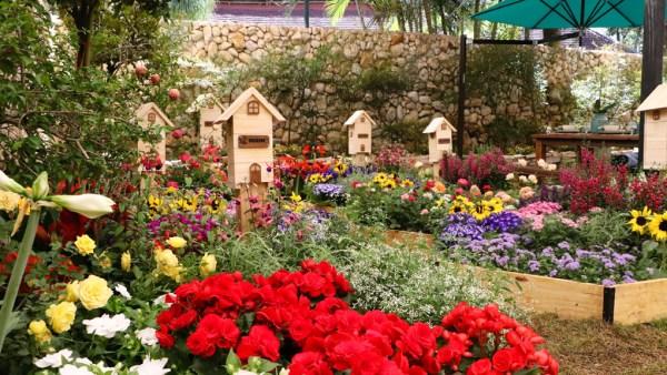 Expoflora, maior festa de flores da América Latina, ocorre em Holambra