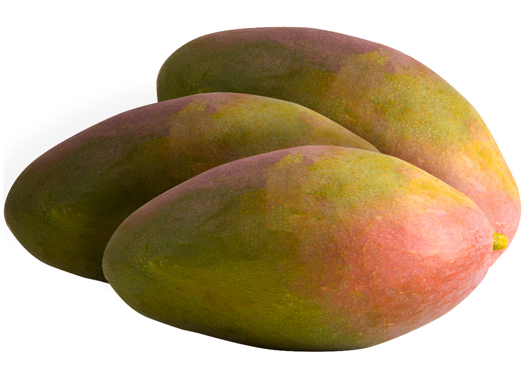 Manga palmer