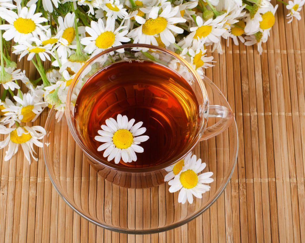 tipos de chá