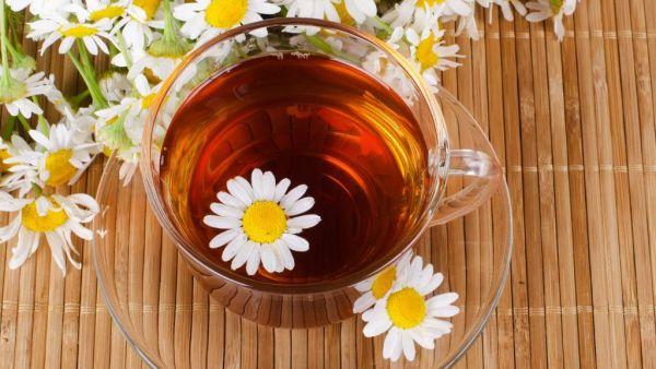 Diferentes tipos de chá movimentam o agronegócio brasileiro