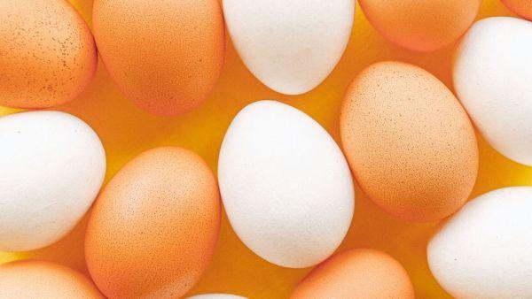 Ovo vermelho é produzido pelas galinhas marrons