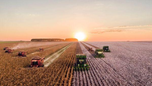 SLC Agrícola, produtora de commodities agrícolas, foi fundada em 1977