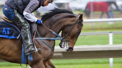 Esportes com cavalos são praticados desde a antiguidade