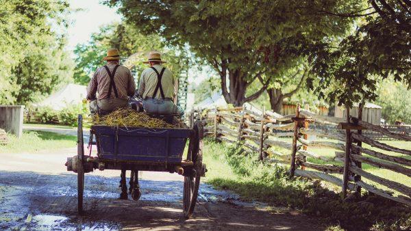 Cooperativa rural fortalece a solidariedade entre trabalhadores do campo