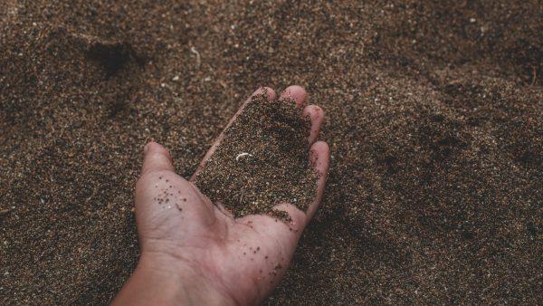 Acidez do solo pode ser corrigida com a técnica de calagem