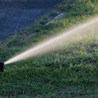 Irrigação de pastagem garante pastos de qualidade o ano todo