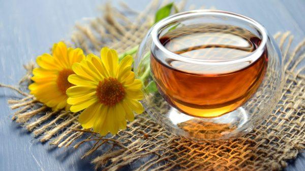 Mel de caju é produzido por abelhas com acesso à florada de caju