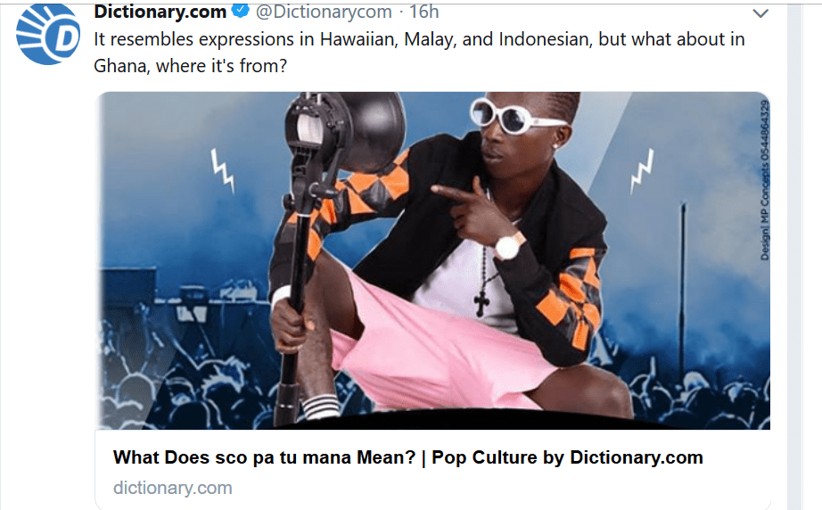 "Patapaa's ""Skopatumana"" explained by dictionary.com"