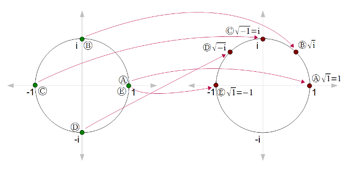 A new multi-branch algorithm to render rational-exponent