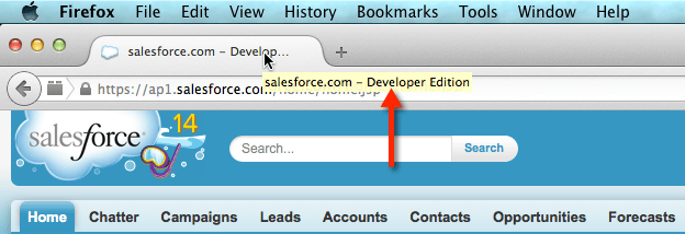 Check Salesforce Edition in FireFox