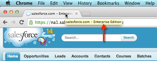 Check Salesforce Edition in Google Chrome