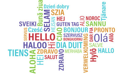 Multi Language in Salesforce