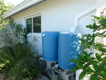 rain barrels beside a home