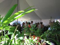 Ninth Annual Sarasota County Master Gardener Plant Sale