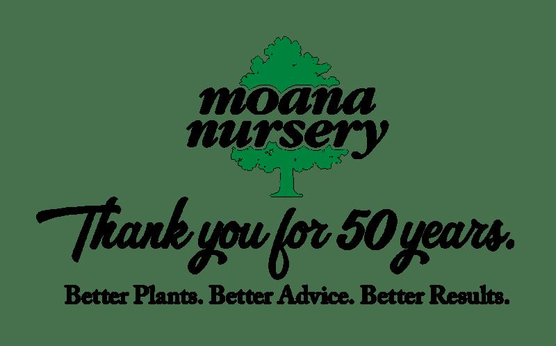 The High Desert Gardener (Moana Nursery's December Holiday