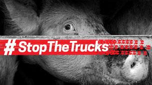 Stop the trucks.