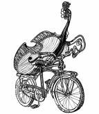 bass bike