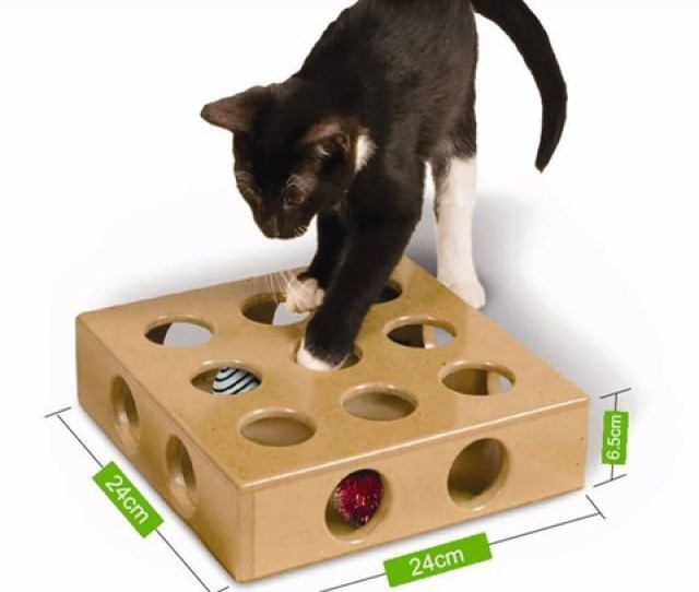 Free D Printer Model Hide Seek Cat Toy Version  Minimal Support