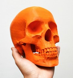 best 3d printer files of skulls [ 1580 x 790 Pixel ]