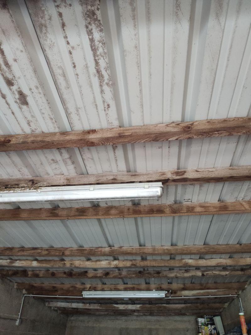 Charpente Mono Pente Pour Garage Renovation 6 Messages