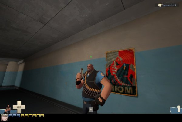 20 Tf2 Sprays Sandvich Despancer Pictures And Ideas On Meta Networks