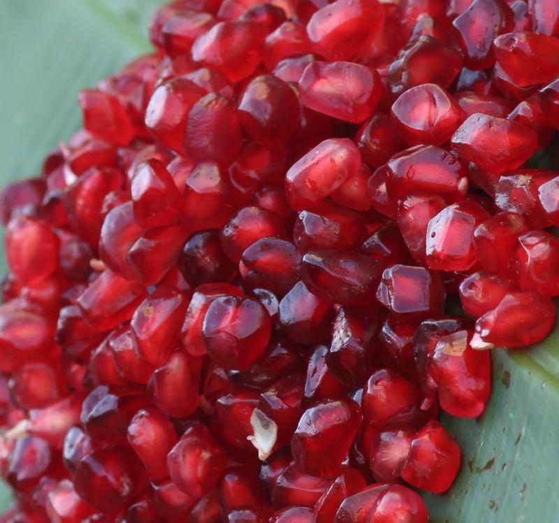 lebensmittel mit viel omega 3 und 6 fettsäuren