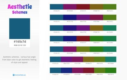 165c7d Aesthetic Color Schemes