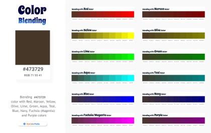 473729 Color Blending / Mixing