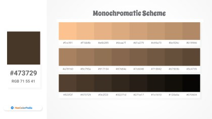 473729 Monochromatic Scheme