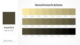 4e4934 Monochromatic Scheme