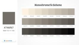 746f67 Monochromatic Scheme