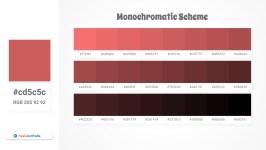 cd5c5c Monochromatic Scheme