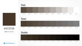473729 Tints tones & Shades