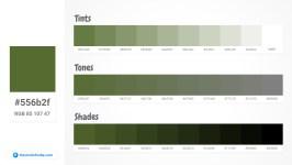 556b2f Tints tones & Shades
