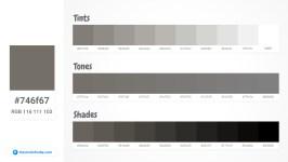746f67 Tints tones & Shades
