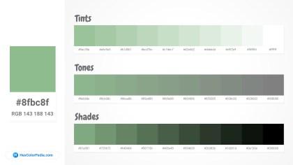 8fbc8f Tints tones & Shades