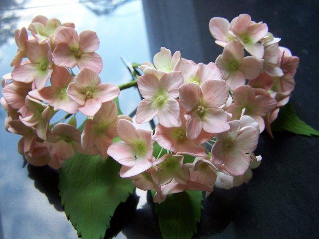 Zucker Kunstwerke  Hortensien