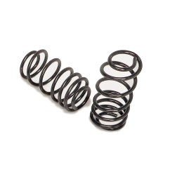 1965 1966 ford galaxie rear coil springs by hotchkis [ 1500 x 1500 Pixel ]