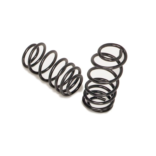 small resolution of 1965 1966 ford galaxie rear coil springs by hotchkis