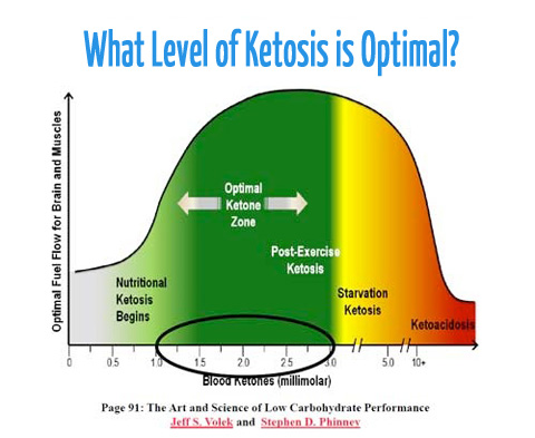 Image result for ketosis level