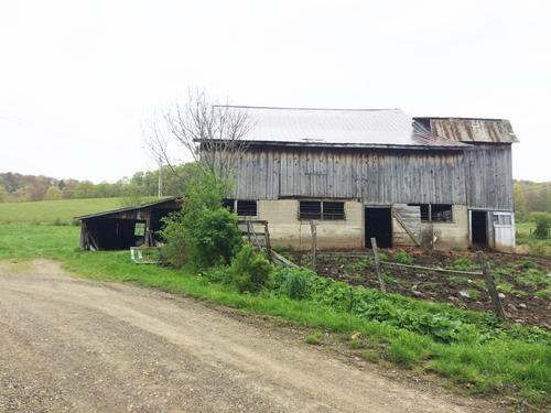 Land  Home For Sale 3 Acres Near Wellsville NY Property Images  LandSaleListings