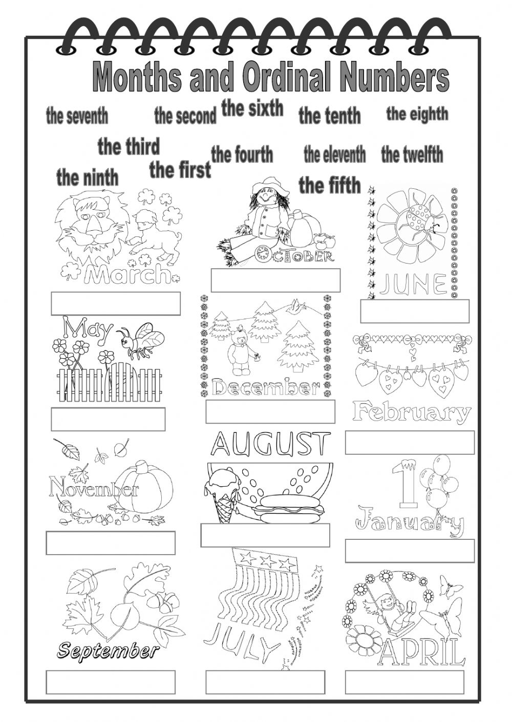 Months and Ordinal Numbers worksheet