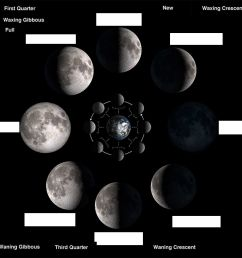 phases of moon worksheet [ 1000 x 1000 Pixel ]