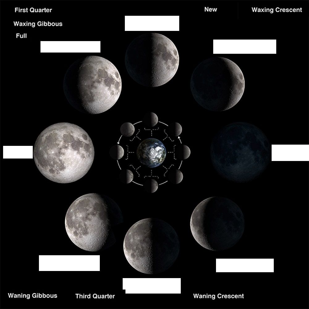 hight resolution of phases of moon worksheet